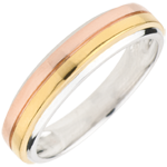 Wedding Trilogy Ring Eureka