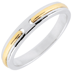 Alliance Promesse - or blanc et jaune - petit modèle