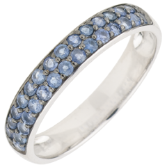 Ring Bird of Paradise - two lines - white gold and blue sapphire