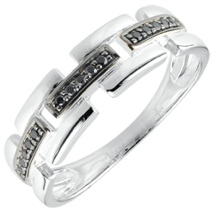 Anillo Claroscuro - Camino Secreto - pequeño modelo - oro blanco 9 quilates - diamante negro