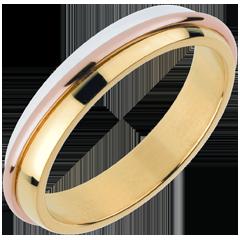 Alianza Sortijas Solares - oro rosa y oro amarillo 18 quilates