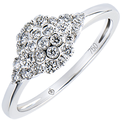 Anillo Solitario Frescura - Colmena - oro blanco de 9 quilates y diamantes