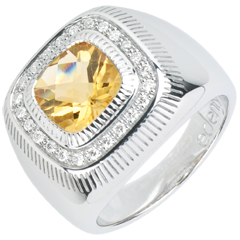 Bague Oeil Solaire - Argent, diamants et pierres fines