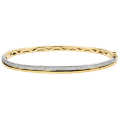 Bangle Elegantie - witgoud en geelgoud met diamanten - 9 karaat goud