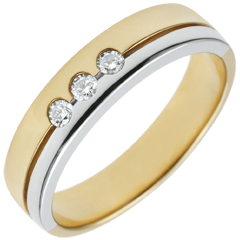 Bi-colour Gold Olympia Trilogy Wedding Band - Average Model