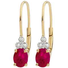 Boucles d'oreilles Exquises - rubis et diamants - or jaune 9 carats