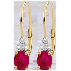 Boucles d'oreilles Exquises - rubis et diamants - or jaune 9 carats