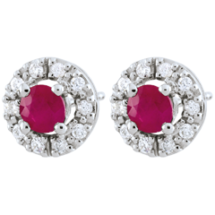 Clévia Ruby Earrings