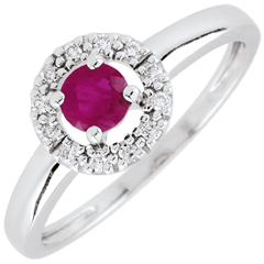 Clévia Ruby Ring - 18 carats