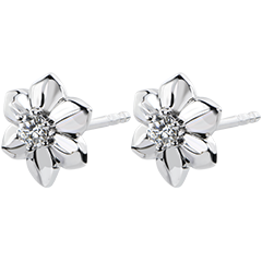 Earrings Freschezza - Dahlia - white gold 18 carats and diamond
