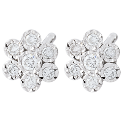Earrings Freshness - Flower Snowflake variation - white gold