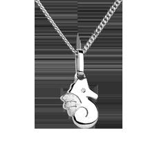 Hermoso Hipocampo (caballito de mar) - pequeño modelo - oro blanco 18 quilates