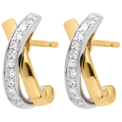 Jewelled White and Yellow Gold Earrings - 22 Diamonds