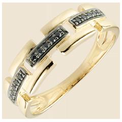 Ring Chiaroscuro - Geheim Pad - 18 karaat geelgoud - klein model