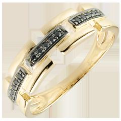 Ring Chiaroscuro - Geheim Pad - 9 karaat geelgoud klein model