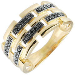 Ring Clair Obscure - Secret Path - yellow gold - large model 18 carat