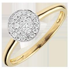 Ring Constelatie Tweekleurig - 9 karaat goud