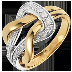 Ring Eeuwige Liefde 18 karaat witgoud en geelgoud