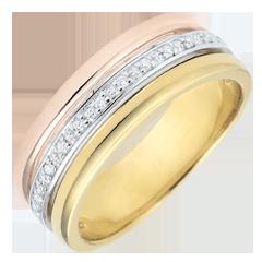 Ring Egeria - drie goudkleuren en diamanten - 18 karaat goud