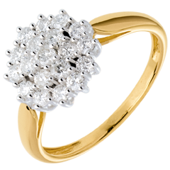 Ring Kaleidoscope pavézetting - 0.61 karaat - 19 Diamanten - 18 karaat witgoud en geelgoud