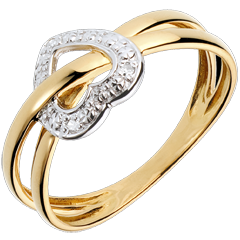 Ring Liefdesplaneet - 18 karaat witgoud en geelgoud