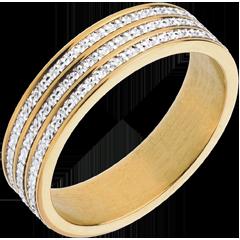 Ring Oneindig fijn - 18 karaat witgoud en geelgoud