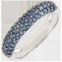Ring Paradijsvogel - drie rijen - 9 karaat witgoud en Blauwe Saffier
