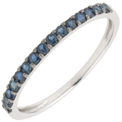 Ring Paradijsvogel - een rij - wit goud en blauwe saffier
