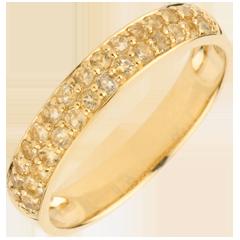 Ring Paradijsvogel - twee rijen - 9 karaat geelgoud en Gele Citrien