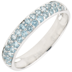 Ring Paradijsvogel - twee rijen - 9 karaat witgoud en Blauwe Topaas