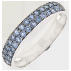 Ring Paradijsvogel - twee rijen - wit goud en blauwe saffier