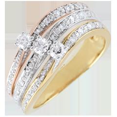 Ring Saturn Große Trilogie - Zweierlei Gold - 0.372 Karat - 18 Karat