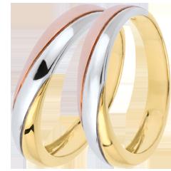 Trauringpaar Saturn Trilogie - Tricolor - 9 Karat Gold