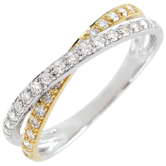 Trouwring Saturnus Duo dubbele Diamant 9 karaat geelgoud en witgoud