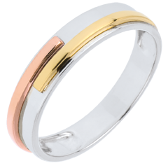 Wedding Ring White Titan - Three golds