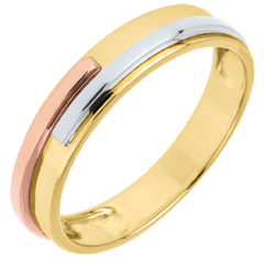 Wedding Ring Yellow Titan - Three golds