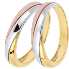 Wedding Rings Duo Saturn Trilogy -Three golds - 18 carats