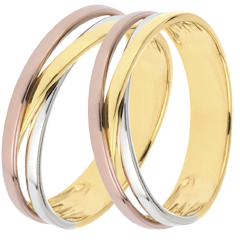 Wedding Rings Duo Saturn Trilogy variation - Three golds - 9 carats